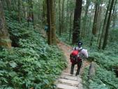 新竹尖石八五山古道、內鳥嘴山、北得拉曼步道:DSCN5040.JPG