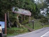 嘉義阿里山對高岳:IMGP0658.JPG
