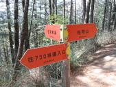台中和平閂山鈴鳴山(DAY1-閂山):DSCN4195.JPG