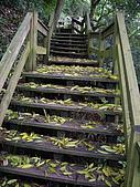 台中后里鳳凰山步道、觀音山步道:IMGP3849.JPG