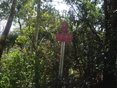 新北林口頂福巖森林步道:IMGP0969.JPG