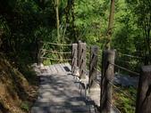 新竹橫山福沙大崎步道:IMGP9440.JPG