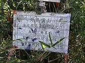 新竹縣關西外鳥嘴山、鴛鴦谷瀑布:IMGP1224.JPG