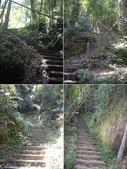 雲林古坑嘉南雲峰、石壁山、萬年峽谷:IMGP9283-91.JPG