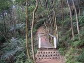 新北林口新林步道:IMGP7496.JPG