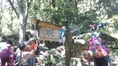 台中和平八仙山主峰步道、佳保台山:IMAG0037.jpg