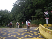 嘉義阿里山對高岳:IMGP0665.JPG
