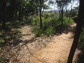 新北林口頂福巖森林步道:IMGP0970.JPG