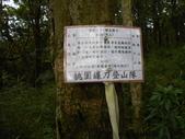 新竹尖石八五山古道、內鳥嘴山、北得拉曼步道:DSCN4983.JPG