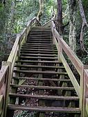 台中后里鳳凰山步道、觀音山步道:IMGP3850.JPG