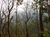 宜蘭大同旗山、婆羅山:DSCN4799.JPG