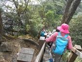 新竹尖石八五山古道、內鳥嘴山、北得拉曼步道:DSCN5034.JPG