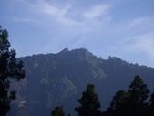 嘉義阿里山塔山步道、大塔山:IMGP0737.JPG