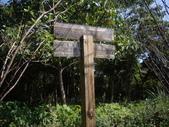 新北林口頂福巖森林步道:IMGP0971.JPG