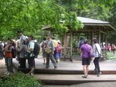宜蘭員山福山植物園:IMGP5518.JPG