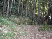 雲林古坑嘉南雲峰、石壁山、萬年峽谷:IMGP9292.JPG