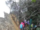 新竹尖石八五山古道、內鳥嘴山、北得拉曼步道:DSCN5035.JPG