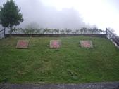 嘉義阿里山對高岳:IMGP0670.JPG
