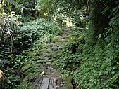 新北深坑土庫岳、山豬窟尖:IMGP6631.JPG