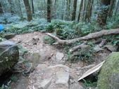 新竹尖石八五山古道、內鳥嘴山、北得拉曼步道:DSCN5039.JPG