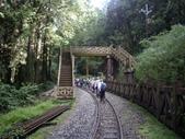 嘉義阿里山塔山步道、大塔山:IMGP0741.JPG