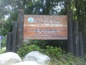 苗栗泰安雪見遊憩區、林間步道:IMG_0001.jpg