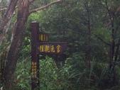 新竹關西石光古道、面埔頂山:IMGP3616.JPG