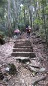 台中和平八仙山主峰步道、佳保台山:IMAG0050.jpg