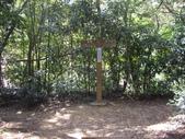 新北林口頂福巖森林步道:IMGP0973.JPG