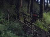 嘉義阿里山塔山步道、大塔山:IMGP0748.JPG