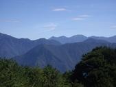 南投信義鹿林前山、鹿林山、麟趾山:IMGP3463.JPG
