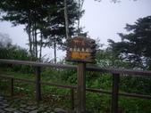 嘉義阿里山對高岳:IMGP0672.JPG