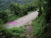 台中后里鳳凰山步道、觀音山步道:IMGP3855.JPG