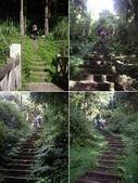 嘉義阿里山塔山步道、大塔山:IMGP0751-54.JPG
