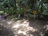 新北林口頂福巖森林步道:IMGP0975.JPG