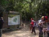 屏東牡丹里龍山步道、里龍山:IMGP5355.JPG