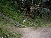 新竹芎林石碧潭山、飛鳳山、中坑山、牛欄窩山:IMGP6577.JPG
