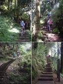 嘉義阿里山塔山步道、大塔山:IMGP0756-61.JPG