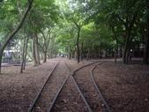 宜蘭羅東林業文化園區:IMGP5584.JPG