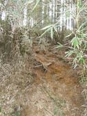 台中和平閂山鈴鳴山(DAY1-閂山):DSCN4241.JPG