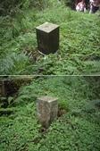 嘉義阿里山塔山步道、大塔山:IMGP0759-60.JPG