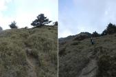 台中和平閂山鈴鳴山(DAY1-閂山):DSCN4246-47.JPG