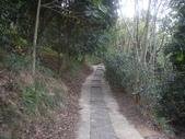 新竹寶山迴龍步道:IMGP7355.JPG