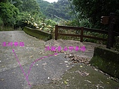 台中后里鳳凰山步道、觀音山步道:IMGP3857.JPG
