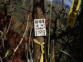 新竹北埔五指山:IMGP1089.JPG