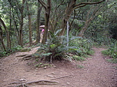 新竹芎林石碧潭山、飛鳳山、中坑山、牛欄窩山:IMGP6580.JPG