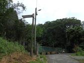 新竹北埔水磜村桐花林登山步道:DSCN3747.JPG