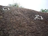 桃園大溪草嶺山、石厝坑山、白石山:IMGP1285.JPG