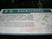 新北平溪頂子寮山、五分山:IMGP6499.JPG