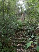 新竹北埔水磜村桐花林登山步道:DSCN3751.JPG
